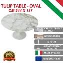 244 x 137 cm oval Tulip table - Gold Calacatta marble